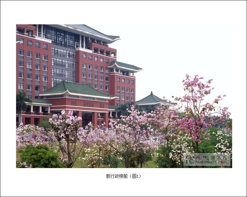 """而在广州,堪与武汉大学樱花媲美的也只有华南农业大学里那一片镶嵌于"""""""