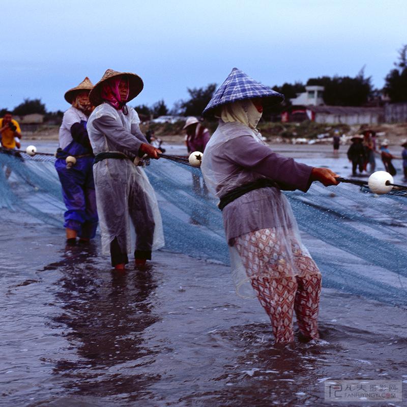 渔民们紧张有序的收网