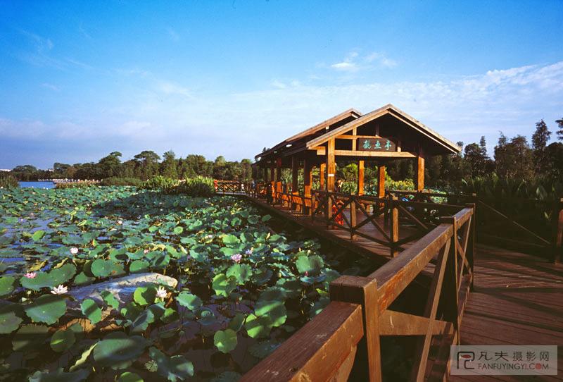 海珠湖·观鱼亭